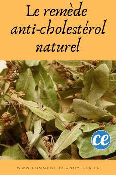 Anti Cholesterol, Detox, Beauty Hacks, Meditation, Nutrition, Sports, Cholesterol Levels, Health Remedies, Natural Medicine