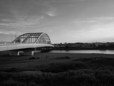 tamagawa river #brige