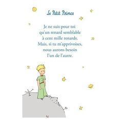 """Citations tirées du livre """"Le petit prince"""" de Saint Exupéry"""