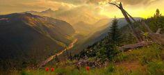 Накануне стало известно, что подписан проект постановления правительства России, которым регламентируется создание нового национального парка в Приморье. «Бикин» - так...