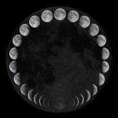 Sacred Geometry <3                                                                                                                                                      More