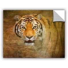 ArtWall Antonio Raggio ' Watching Tiger ' Art Appealz Removable Wall Art, Size: 36 x 48, Orange