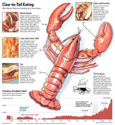 From fast food to fine dining, #lobster is showing up on more menus. http://online.wsj.com/news/interactive/LOBSTER0319?ref=SB10001424052702304017604579447152568114232… pic.twitter.com/bML0EvIOkJ