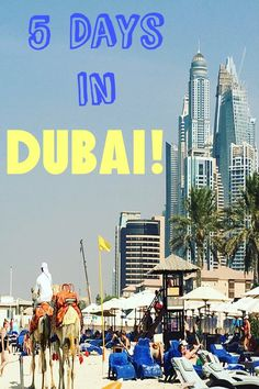 How I Spent 5 Days in Dubai & Abu Dhabi! An Amazing Itinerary of Beaches, Mosques, Malls, Restaurants & More!