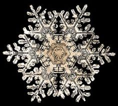 "Vermont Snowflakes-"" Snowflake"" Bentley Collection prints and collectibles."