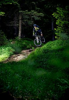 Rider: Caro Gehrig | Location: Laax | Photo: Dominic Zimmermann | Spring / Summer Collection 2014 | www.zimtstern.com | #zimtstern #spring #summer #womens #collection #action #mountain #bike #trail #downhill #clothing