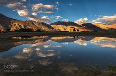 Voyagers by dibyendudasphotography from http://500px.com/photo/214591861 - This photograph I took at Nubra Valley during my Ladakh photo tour. I love this shot very much because I got everything in one photograph what a photographer can expect in Nubra. I got the light reflections clouds camel and silhouette in one shot. Also got a faint rays on the sky. Hope you will also like it.. More on dokonow.com.