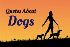 Quotes About Dogs https://didyouknowpets.com/2015/07/17/quotes-about-dogs/