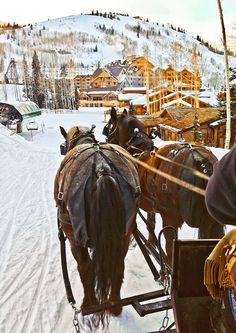 Sleigh ride at Deer Valley Resort, Utah #slcahr #utah slcamazinghomerace@gmail.com
