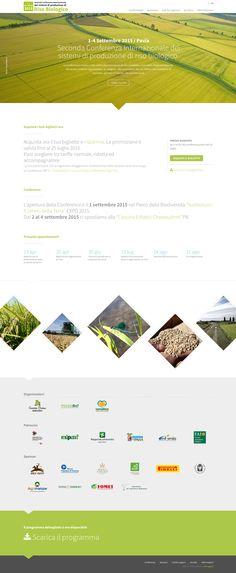 Seconda Conferenza Internazionale dei sistemi di produzione di riso biologico 1-4 Settembre 2015 / Pavia