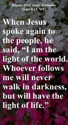 """When Jesus spoke again to the people, he said, """"I am the light of the world. Whoever follows me will never walk in darkness, but will have the light of life."""" The Pharisees challenged him, """"Here you are, appearing as your own witness; your testimony is not valid."""" Jesus answered, """"Even if I testify on my own behalf, my testimony is valid, for I know where I came from and where I am going. But you have no idea where I come from or where I am going."""