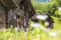 Crestasee Transylvania Romania, Bosnia And Herzegovina, Present Day, World Traveler, Slovenia, Croatia, Switzerland, Places Ive Been, Italy