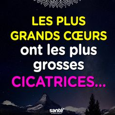 Citation                                                                                                                                                                                 Plus