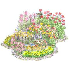 Summer Butterfly Garden  Attract butterflies with this mix of bold and beautiful zinnias, spider flower, and marigolds.  Garden size: 10 by 12 feet.