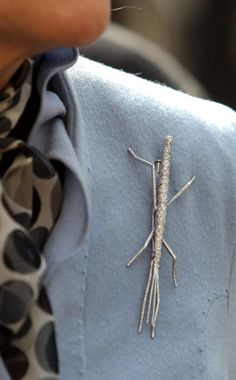 Stick Insect Brooch, Camilla Duchess of Cornwall