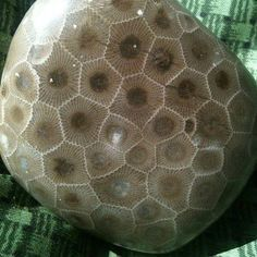 How To Recognize Rough Agate Agates And Pictures