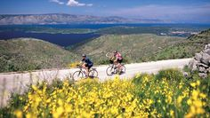 #sustainable #travel The 6 Best #Cycling Tours in Europe - Home of the Tour de France and the bicycle, the continent is best explored on two wheels By: Deb Hopewell Apr 21, 2015