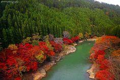 Arashiyama Kyoto by Even Liu on 500px