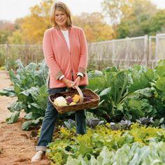 A Tour of Martha's Vegetable Garden   Martha Stewart