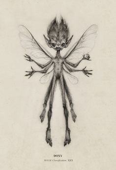 New Fantastic Beast design! I hope you like the little guy :) Doxy M. Classification XXX (Sometimes known as Biting Fairy) The Doxy often mistaken for a fairy, though it is a quite separate species. Like the fairy, it has a minute human form,. Creature Drawings, Animal Drawings, Art Drawings, Fantasy Drawings, Beast Creature, Arte Obscura, Mythological Creatures, Fairy Art, Magical Creatures