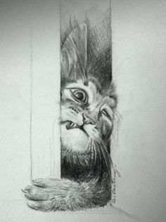 cat out drawing by Chattravadee