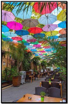 Umbrella Street, Umbrella Art, Beautiful Streets, Beautiful Places, Beautiful Pictures, Amazing Places, Best Summer Holiday Destinations, Nicosia Cyprus, Puerto Rican Culture