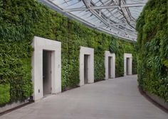 Longwood Gardens Beautiful!!! Take your spouse out for a free date and just enjoy one another.