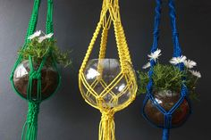 Forestonia macrame hangers