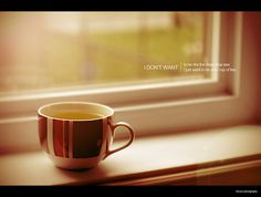 [246/365] I don't want to be like the deep blue sea. I just want to be your cup of tea. by Ken CK Lam (ckLam Photography), via Flickr