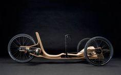 Rennholz electrical recumbent bike