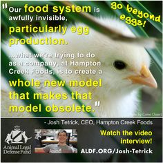 The Future of Eggs, and Beyond (Videos) 3/27/13 human egg, creek food