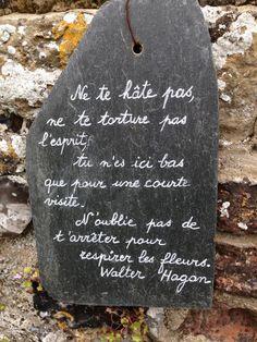 Ne te hâte pas, ne te torture pas, tu n'es ici bas que pour une courte visite. N'oublie pas de t'arrêter pour respirer les fleurs.  Walter Hagon