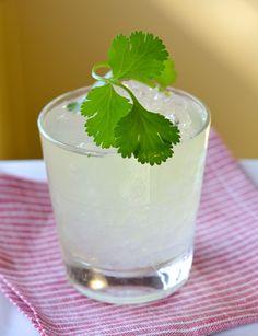 Turista Smash - blanco tequila, dry vermouth, lemon juice, cucumber wheels, sprigs of cilantro, simple syrup
