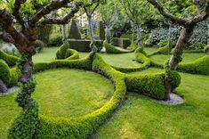 Beautiful garden setos circulares entre árboles