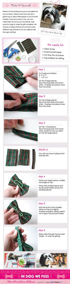 DIY No Sew Bow Tie For Dogs #PoochPawy