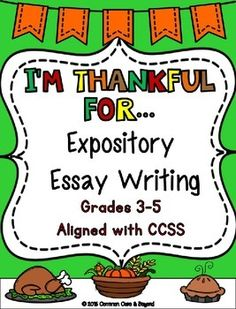 expository essay definition in literature