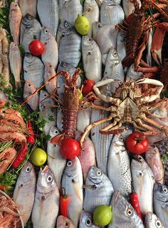 Flavors of Morocco - - Essaouira fish market Seafood Market, Seafood Store, Fabric Fish, A Hat In Time, Latin Food, Fish And Seafood, Street Food, Food Styling, Food Art