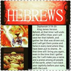 Promises from the Bible to the Hebrew Israelites Revelation Bible, Black Hebrew Israelites, 12 Tribes Of Israel, Tribe Of Judah, Learn Hebrew, Lion Of Judah, Black History Facts, Thing 1, Bible Knowledge