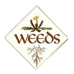 "Just in case any one is uncertain about what's really growing in your garden... ""Weeds"" garden sign, at ATG Stores"