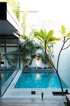 If you like swimming pools, surely you will be interested in these pool designs. There is a swimming pool that is modern but simple. And there is also a luxurious and beautiful swimming pool. Small Inground Pool, Small Swimming Pools, Small Backyard Pools, Backyard Pool Designs, Small Pools, Swimming Pool Designs, Outdoor Pool, Backyard Ideas, Small Patio