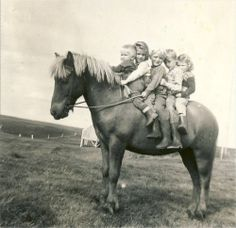 "artamanen: "" Five children on a horse in Southern Iceland, 1956. Photo by Haddi and Adda """
