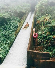 Jungle slide in Hawaii