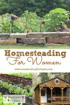 3591 Best Self Sufficiency - Homesteading images in 2019