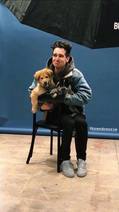 Brendon Urie and puppies Pop Punk, Emo Bands, Music Bands, Rock & Pop, Indie, Band Memes, Grunge, Panic! At The Disco, Fall Out Boy