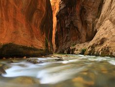The Narrows @ Zion Canyon