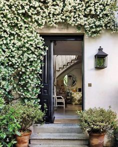 Vegetation ENTRY GOALS When enhancing an area take into consideration your senses - sight contact. Outdoor Walls, Outdoor Living, Outdoor Spaces, Star Jasmine Vine, Front Yard Planters, Living Roofs, Space Interiors, Up House, Home Landscaping