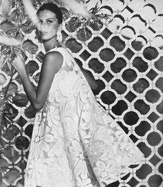 Birgitta af Klercker against fretwork (Vogue, January 1965, by Horst).