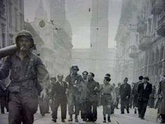 Liberazione di Bologna - foto E. Ansaloni - Museo Memoriale della Libertà - San Lazzaro di Savena (BO). April 1945