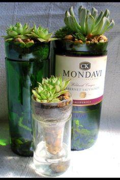 DIY self watering Wine bottle planters :)
