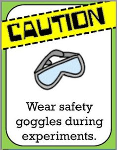 Here's a set poster of safety rules for the science lab. | Science ...